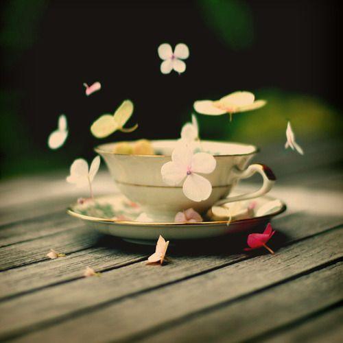 Tranquility Tea