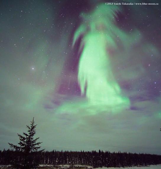 Aurora Borealis (the Northern Lights) over winter landscape of northern Canada. Yuichi Takasaka