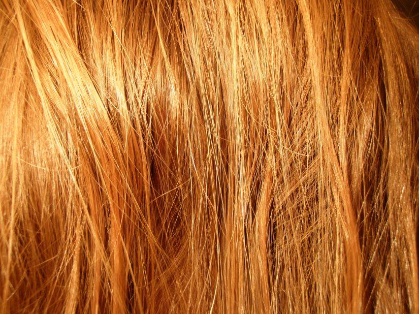 Ozark Encyclopedia – H –Hair