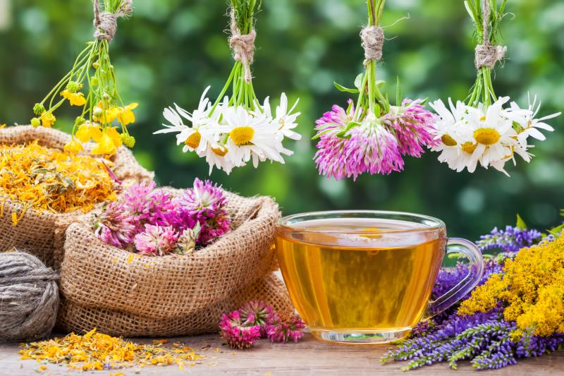 Fall Allergies ~ An Herbal Approach