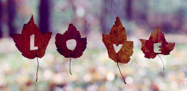 Autumnn Love