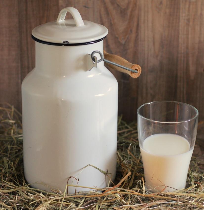 Ozark Encyclopedia – M –Milk