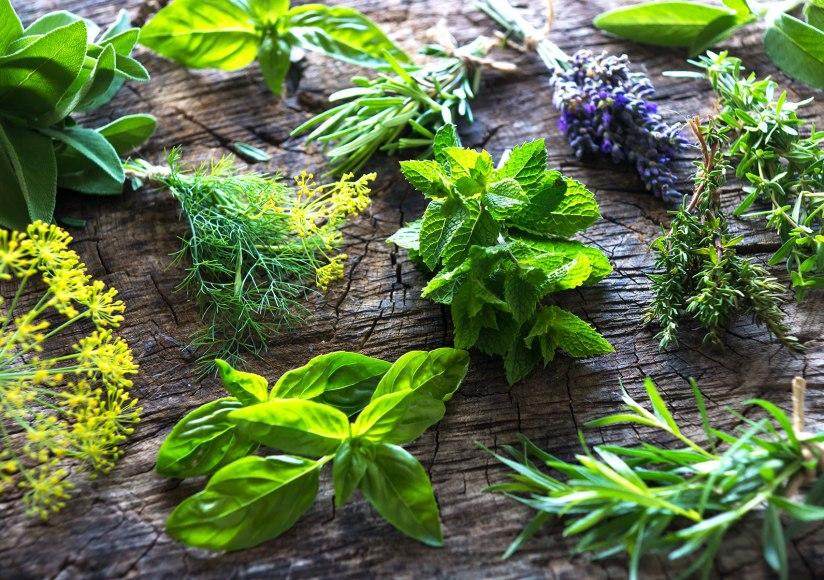Know Your HerbalChemistry