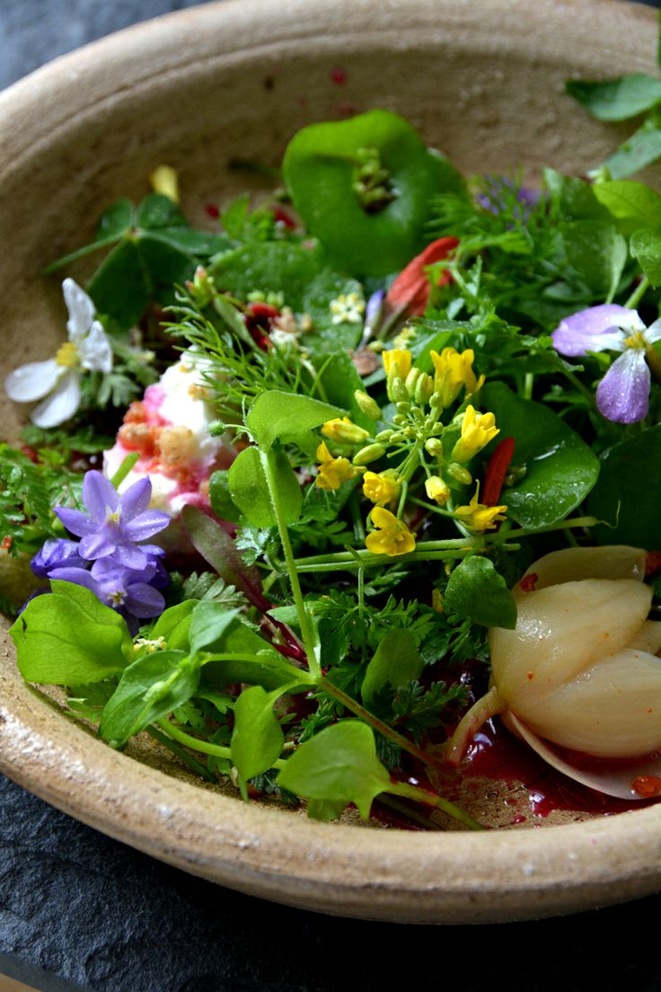 The Forager's: Foraging for SummertimeHerbs