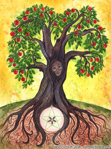 Spirit of the Apple - from the Plant Spirit Oracle (www.plantspiritoracle.com)