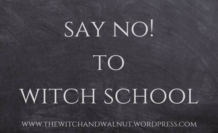 Say NO to Witch School