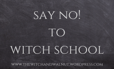 say no! to witch school