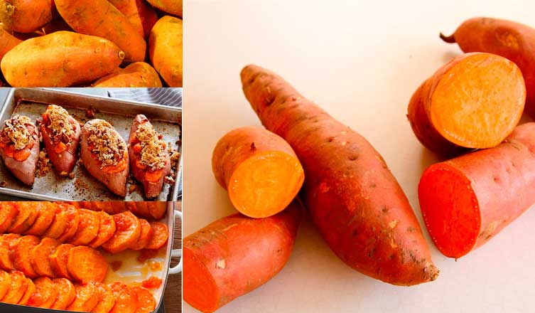 Food as Medicine Update: Sweet Potato (Ipomoea batatas, Convolvulaceae)