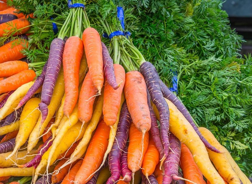 Food as Medicine Update: Carrot  (Daucus carota subsp. sativus,Apiaceae)