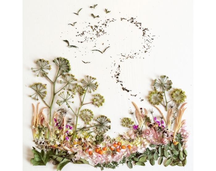 Flora-Forager-by-Bridget-Beth-Collins-6