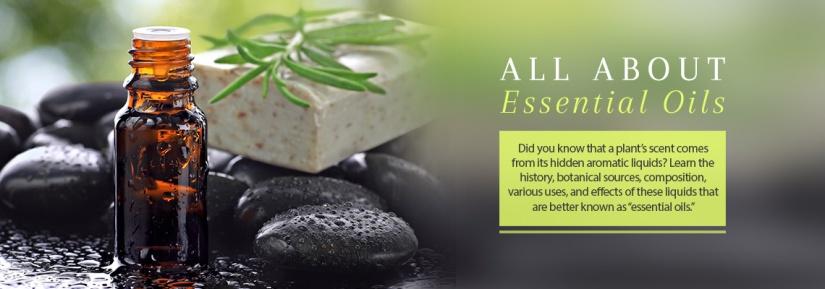 The Essence of Your EssentialOils