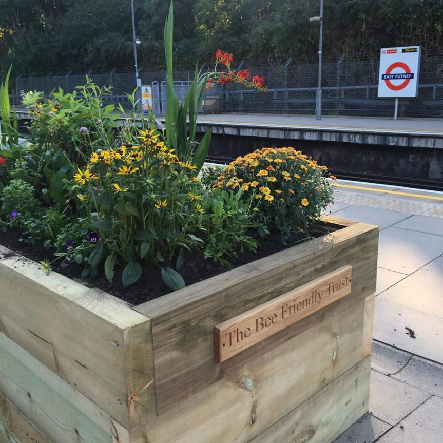 The Bee Friendly Trust transforming station platforms into habitats for honeybees tothrive