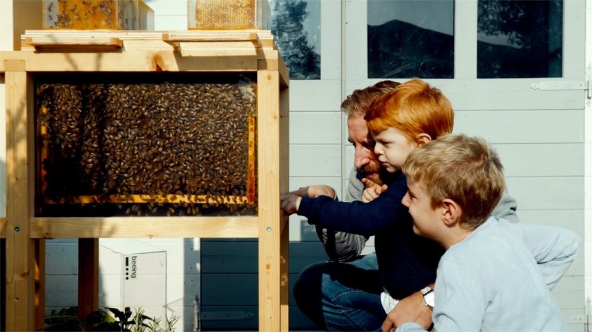 b-box: Urban-friendly hive aims to encourage the bee population and a colony of homebeekeepers