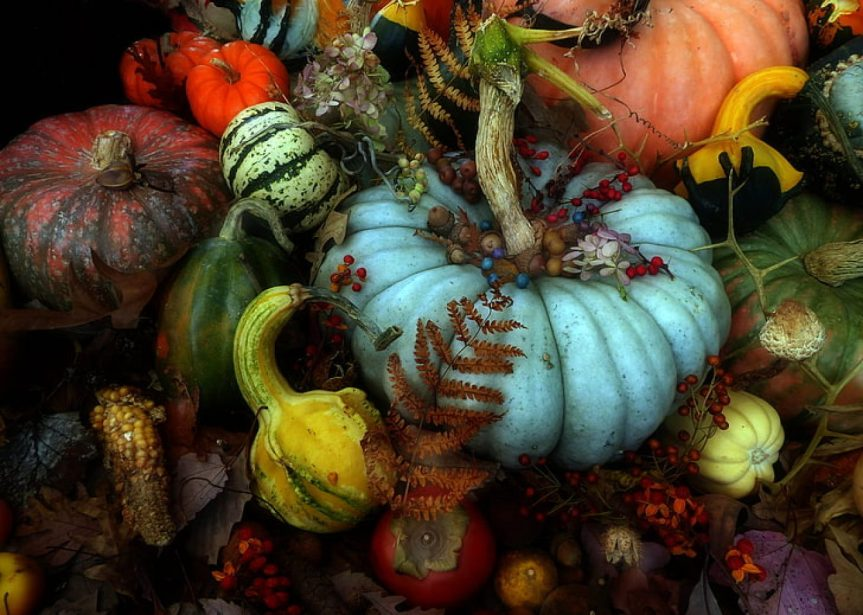 Praise of thePumpkin