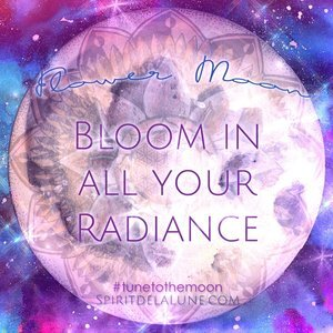 Flower Moon Essence Ceremony - Spirit de la Lune