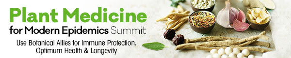 Free Online Event Plant Medicine for Modern Epidemics Summit August 24-28, 2020