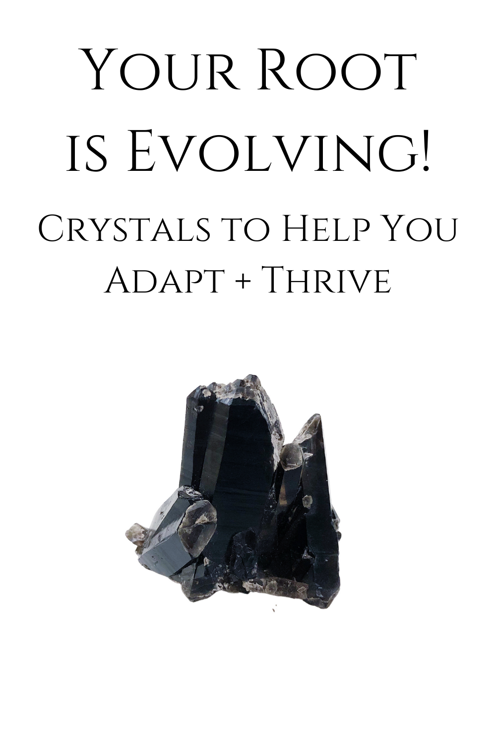 Your Root is Evolving: Crystals to Help You Adapt + Thrive / www.krista-mitchell.com